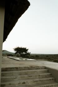 desert-5210
