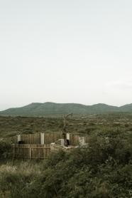 desert-5220
